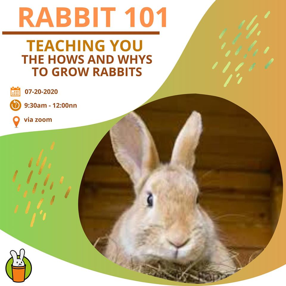 C:\Users\GCPI-ROBBY\Desktop\rabbit\1.jpg
