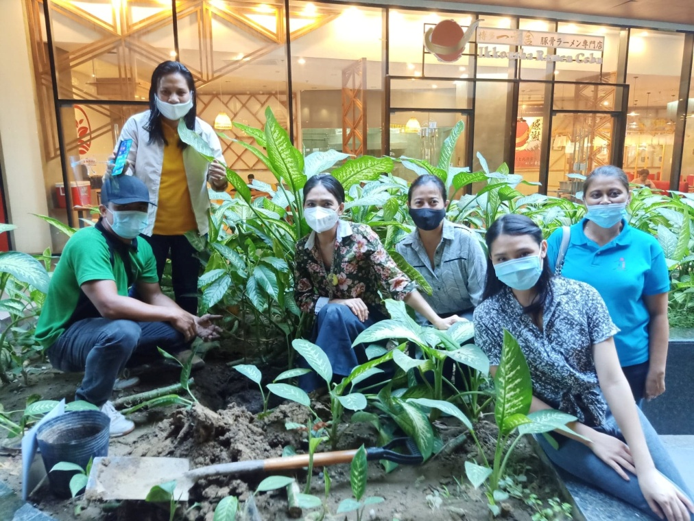 D:\2020 DESKTOP FILES\chocolate queen\PHOTOS\FEATURED ARTICLES\14 - CACAO TREE PLANTING\3.jpg